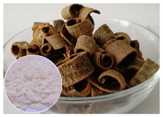China 90% / 95% Magnolia Bark Extract Magnolia Officinalis L. Powder No Synthetic Part supplier