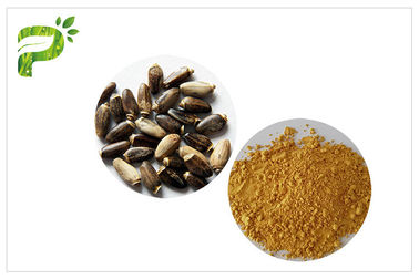 Milk Thistle Plant Extract Powder Silymarin 60% - 80% Preventing Liver Disorder