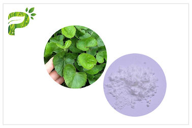 Skin Scars Natural Cosmetic Ingredients White Color From Centella Asiatica Leaf