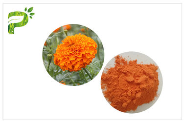 China CAS 127 40 2 Lutein Marigold Flower Extract , Marigold Extract Powder For Tablets supplier