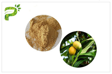 Natural Plant Extract Powder Anti - Inflammatory Mangiferin From Mango Leaf