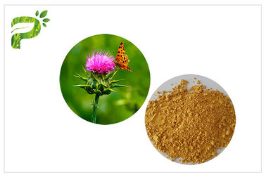 Light Yellow Plant Extract Powder Natural Ingredient Milk Thistle Seed Extract For Liver Medicine