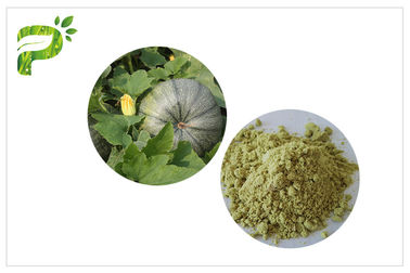 China Vegan Protein 50% 60% Natural Dietary Supplements Ecocert Certified Organic Pumpkin Seed Protein Powder supplier