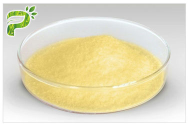 China Panax Ginseng Extract Powder Natural Dietary Supplements Ginsenosides Active Ingredient supplier
