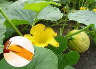 China Food Grade Organic Plant Oils Linolieic Acid From Pumpkin Seed Protecting Prostate factory