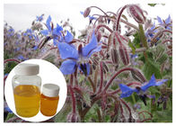Borage Seed Organic Plant Oils Omega 6 Gamma Linolenic Acid Lower Blood Pressure