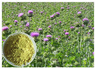 China Liver Protection Silybum Marianum Extract Light Yellow Powder CAS 65666 07 1 factory
