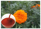 China Tagetes Erecta Flower Natural Flower Extracts Powder Preventing Eye Health factory
