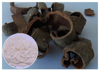 China Magnolia Bark Antifungal Plant Extracts Protecting Liver CAS 528 43 8 HPLC Test Method factory