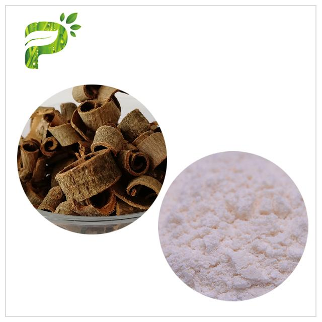 90% / 95% Magnolia Bark Extract Magnolia Officinalis L. Powder No Synthetic Part