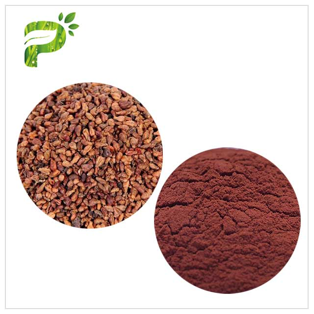 Vitis Vinifera L Grapeseed Extract Anti Oxidation Polyphenols Dark Red Powder
