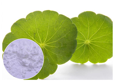 Cosmetic Herbal Plant Extract Centella Asiatica Powder With Madecassoside 90% CAS 34540 22 2