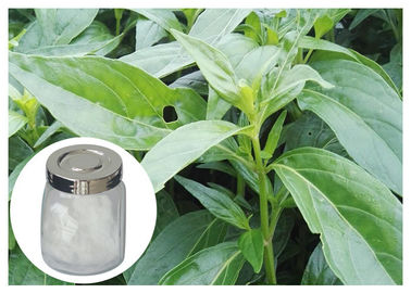 China 98% Andrographis Paniculata Supplement Powder Anti Cancer With HPLC Test distributor
