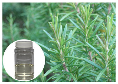 China Colorless Rosemary Oil Extract , Fresh Smell Rosemary Essential Oil For Bath Product distributor