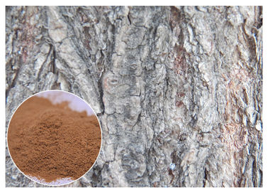 China White Willow Bark Natural Anti Inflammatory Supplements Relieve Headache HPLC Test factory