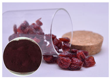 China Skin Moisturizing Antibacterial Plant Extracts Dark Red Powder From Cranberry distributor