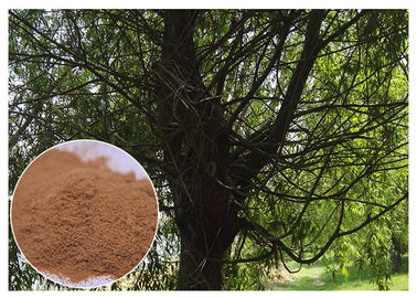 China Brown Antimicrobial Plant Extracts , Salicin White Willow Bark Extract Relieving Headache distributor