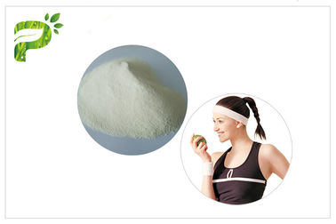 China Keto Diet White Color MCT Oil Extract Medium Chain Triglyceride Powder Sports Nutrition distributor
