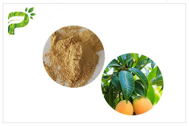 China Anti- Microbial Plant Extracts Mangiferin Mango Leaf Powder CAS 4773 96 0 distributor