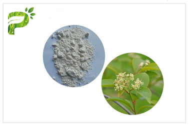 China Tripterygium Wilfordii Plant Extract Powder Immunosuppressant Activitiy Triptolide CAS 38748 32 2 distributor