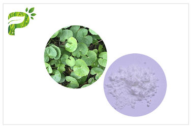 China Acne Gotu Kola Powder Titrated Extract Of Centella Asiatica Anti Inflammatory Function distributor