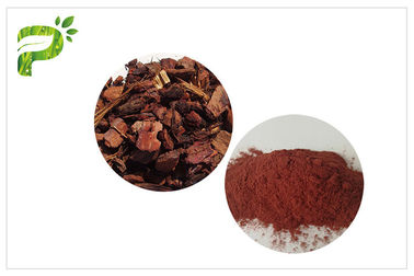 China Anti Aging / Oxidation Plant Extract Powder Proanthocyanidins PACs Pine Bark Powder Dietary Supplement distributor