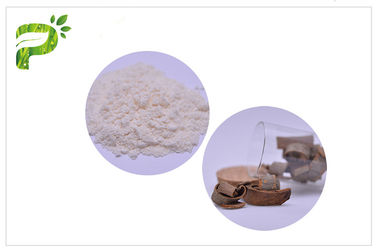 China Anti Caries Magnolia Bark Antibacterial Plant Extract Powder For Tooth Paste distributor