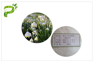 China Skin Smooth Natural Cosmetic Ingredients Summer Snowflake Leucojum Aestivum Extract distributor