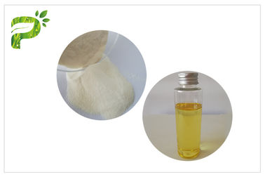 China White Color Anti Oxidation Vitamin E Powder Dl-α- Tocopheryl Acetate Powder Nutritional Supplement distributor