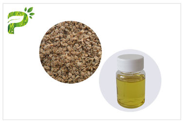 China Anti Aging Tomato Seed Oil Cold Pressed Natural Plant Extract Fatty Acids Ingredient distributor