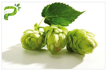 China Flower Powdered Herbal Extracts Broad Spectrum Beer Hops Xanthohumol 98% CAS 6754 58 1 distributor