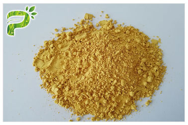 China Anti Cancer Humulus Lupulus Linn Extract Xanthohumol 98% CAS 6754 58 1 Broad Spectrum distributor